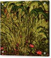 Prairie Grass Acrylic Print