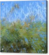 Prairie Impressions Acrylic Print