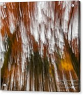 Praise You In This Storm Acrylic Print
