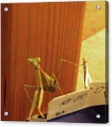 Praying Mantis II Acrylic Print