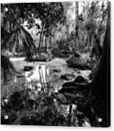 Precolumbian Florida Acrylic Print