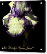 Presby's Crown Jewel Iris  Acrylic Print