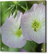 Pretty Little Flowers Acrylic Print