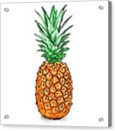 Pretty Pineapple II Acrylic Print