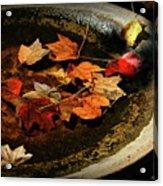 Priceless Leaves Fall Acrylic Print