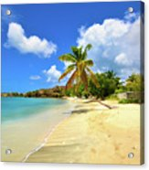 Prickly Bay Wide Acrylic Print