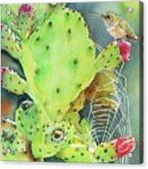 Prickly Pair Acrylic Print