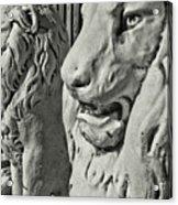 Pride Of Lions Acrylic Print
