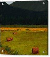 Priest Lake Hay Bales Acrylic Print