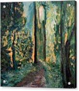 Priest Point Trail Acrylic Print
