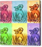Primary Bunnies Acrylic Print
