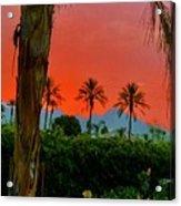 Primary Desert Sunset Acrylic Print