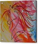 Primary Horse Acrylic Print