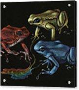 Primary Poison Acrylic Print