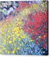 Primavera Acrylic Print