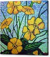 Primula Veris Acrylic Print