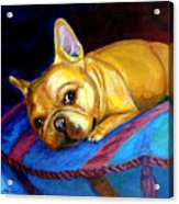Princess And Her Pillow French Bulldog Acrylic Print by Lyn Cook