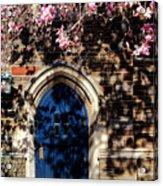 Princeton University Door And Magnolia Acrylic Print