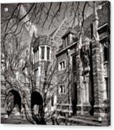 Princeton University Foulke And Henry Halls Archway Acrylic Print