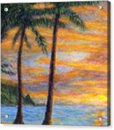 Princeville Beach Palms Acrylic Print
