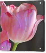 Prismatic Beauty Acrylic Print