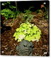 Private Garden Go Away Acrylic Print