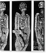 Processes Of Mummification Acrylic Print