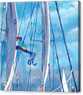 Profile Of A Sailboat Acrylic Print