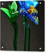 Profile Of Glass Flowers Acrylic Print