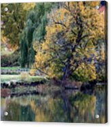 Prosser - Autumn Reflection With Geese Acrylic Print
