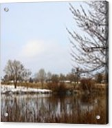 Prosser Winter - Brown And Burgundy Acrylic Print