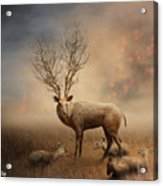 Deer Warm Tone Acrylic Print