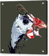 Proud Bird Acrylic Print