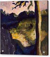 Provence Tree Acrylic Print