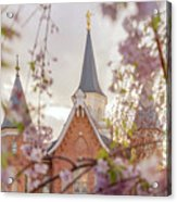Provo City Center Temple Blossoms Acrylic Print