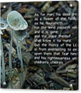 Psalm 103 Temporary And Eternal Acrylic Print