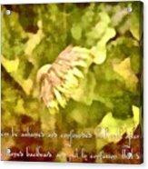 Psalm 70 2 Acrylic Print
