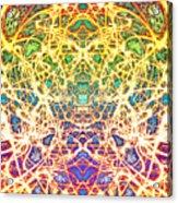 Psychedelic Drug Trip Acrylic Print