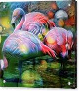 Psychedelic Ibis Acrylic Print