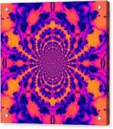 Psychedelic Mandelbrot Set  Kaleidoscope Acrylic Print