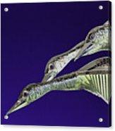Psychedelic Sculpture Of Three Mallard Ducks Flying Acrylic Print