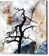 Psychotropic Moon Acrylic Print
