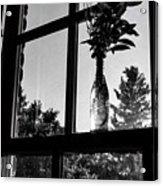 Pt 2 Flowers On A Windowsill Acrylic Print