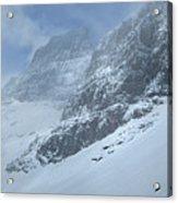 Ptarmigan Lake - Glacier National Park Acrylic Print