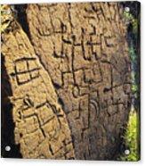 Puako Petroglyphs Acrylic Print