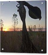 Public Art At Sun Rise Acrylic Print