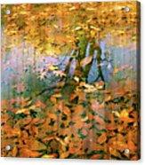 Puddle Play Acrylic Print