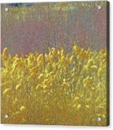 Pueblo Downtown--river Grasses Acrylic Print