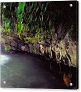 Puerto Rico Waterfall Acrylic Print