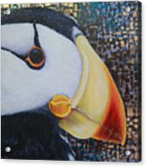 Puffin Glam Acrylic Print